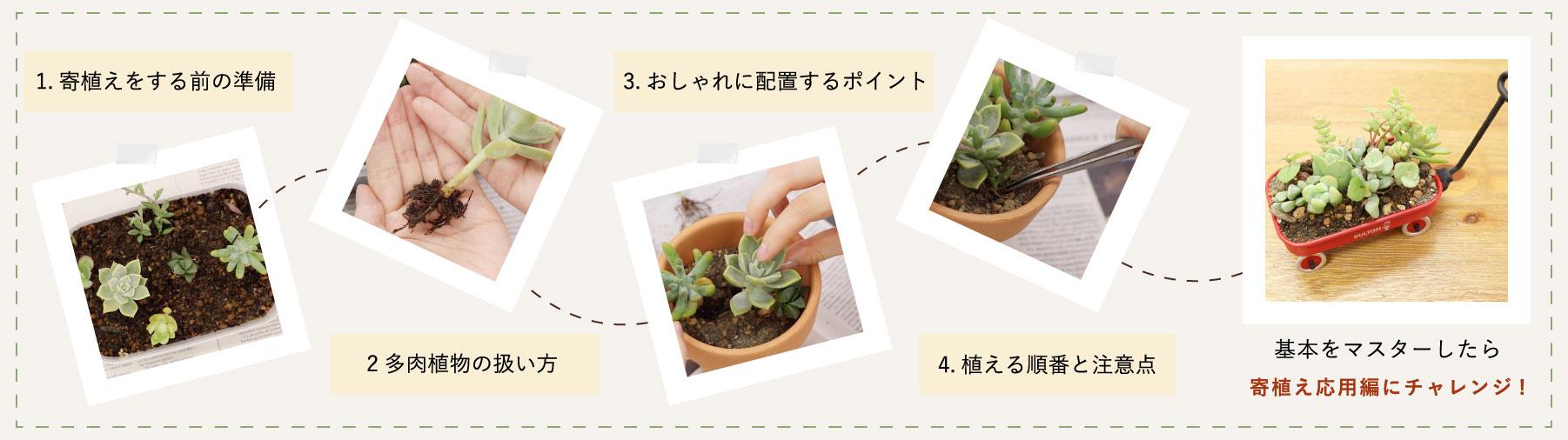 Plant master pc