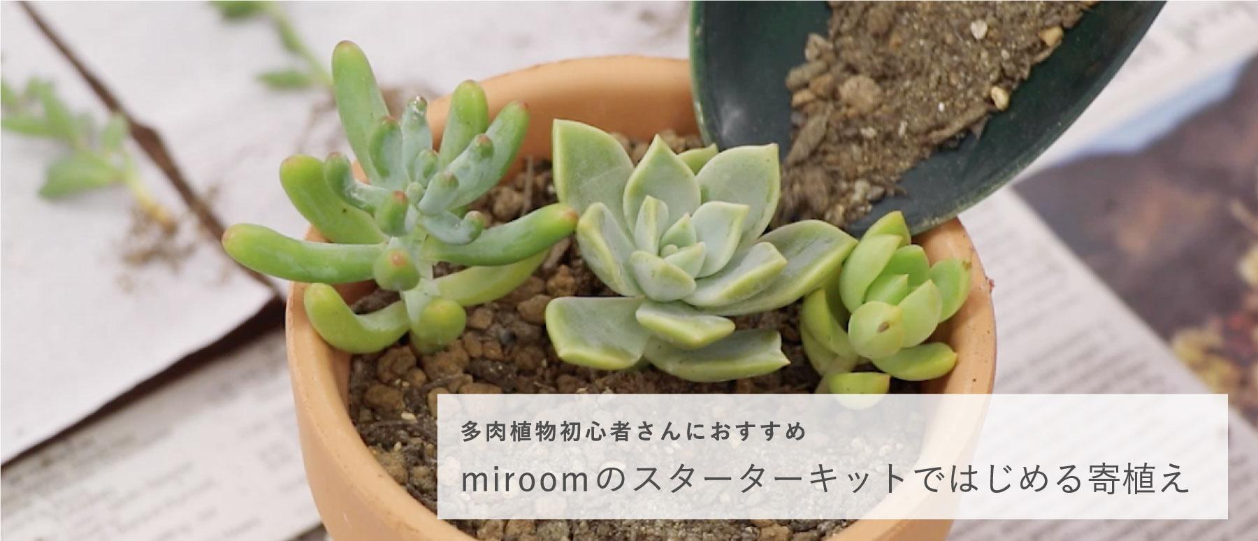 Plant top pc